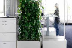 Gesunder Arbeitsplatz in der auf3 Werbeagentur Stuttgart